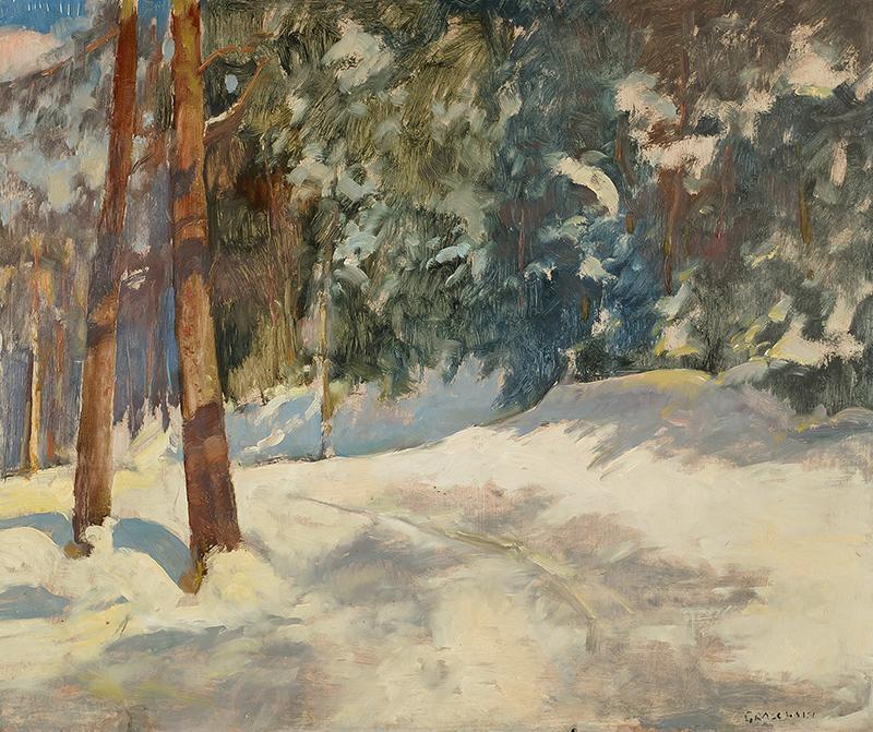Pejzaż zimowy - 2