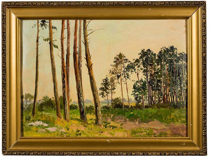 Pejzaż leśny - 1