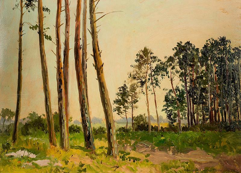 Pejzaż leśny - 2