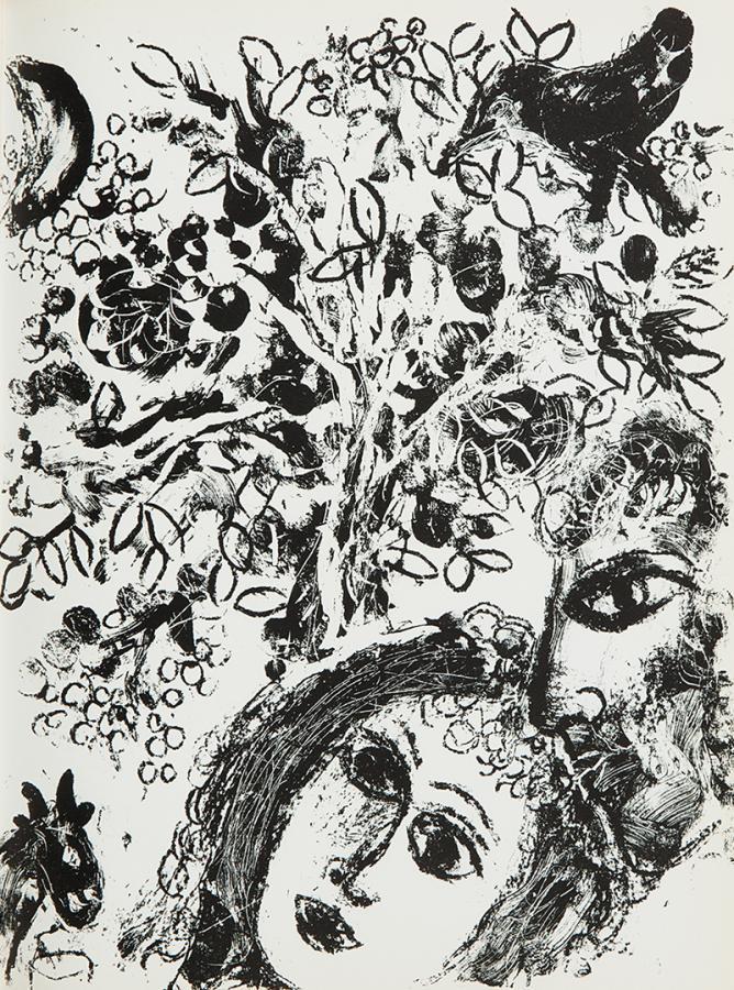 Litografie Chagalla, książka - 1