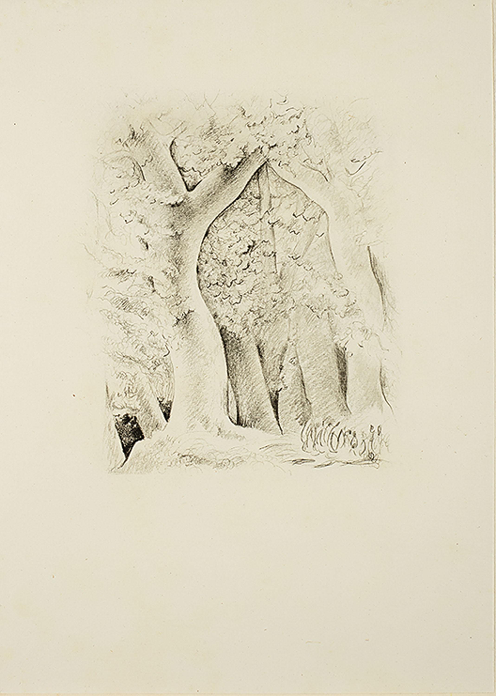 provence-jean-giono-paris-1954-r-mojzesz-kisling-527747