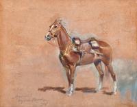 Kasztanka, 1927 r.