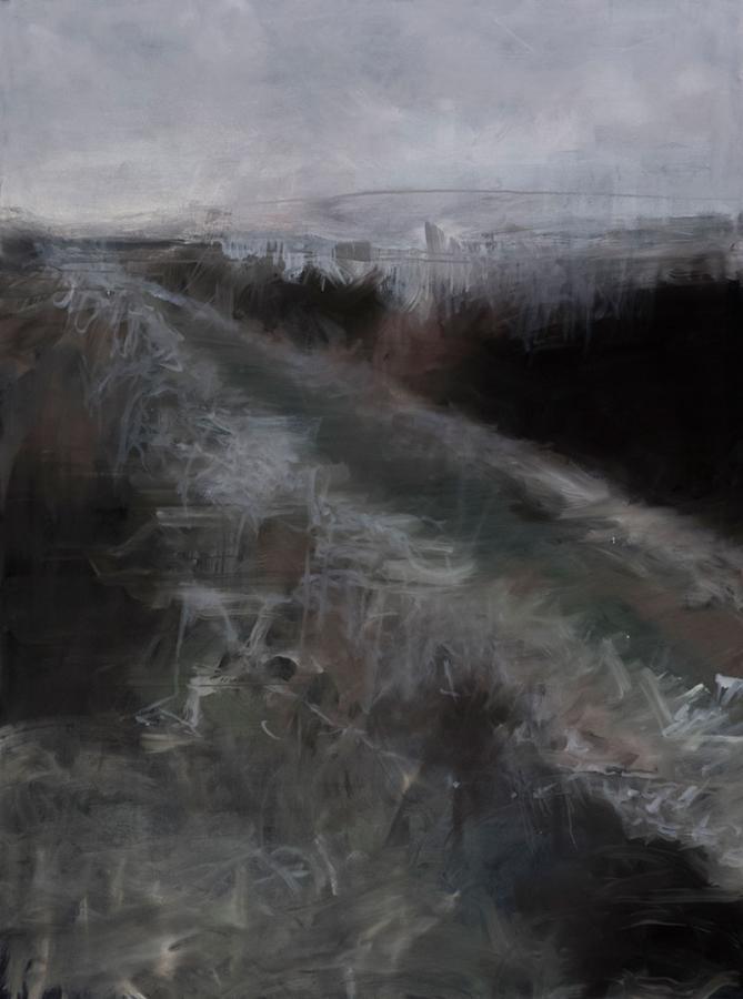 Łąki do wyprowadzania psa, 2013