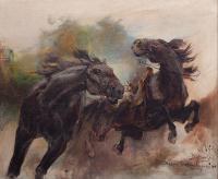 Studium do ataku husarii, 1908 r.