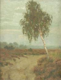 Brzoza przy polnej drodze