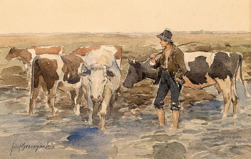 Pasterz z krowami