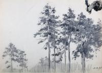 Drzewa, 1915 r.