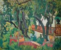 Drzewa – Migdałowce