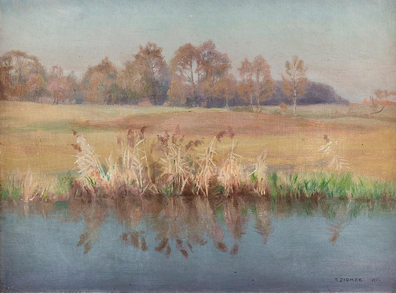 Pejzaż, 1913 r.