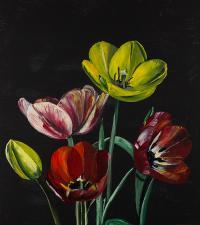 Tulipany 2, 2018