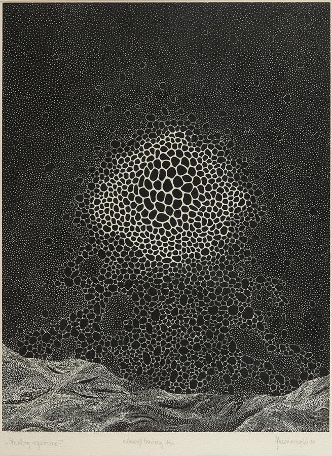 Struktury organiczne I, 1980 r.