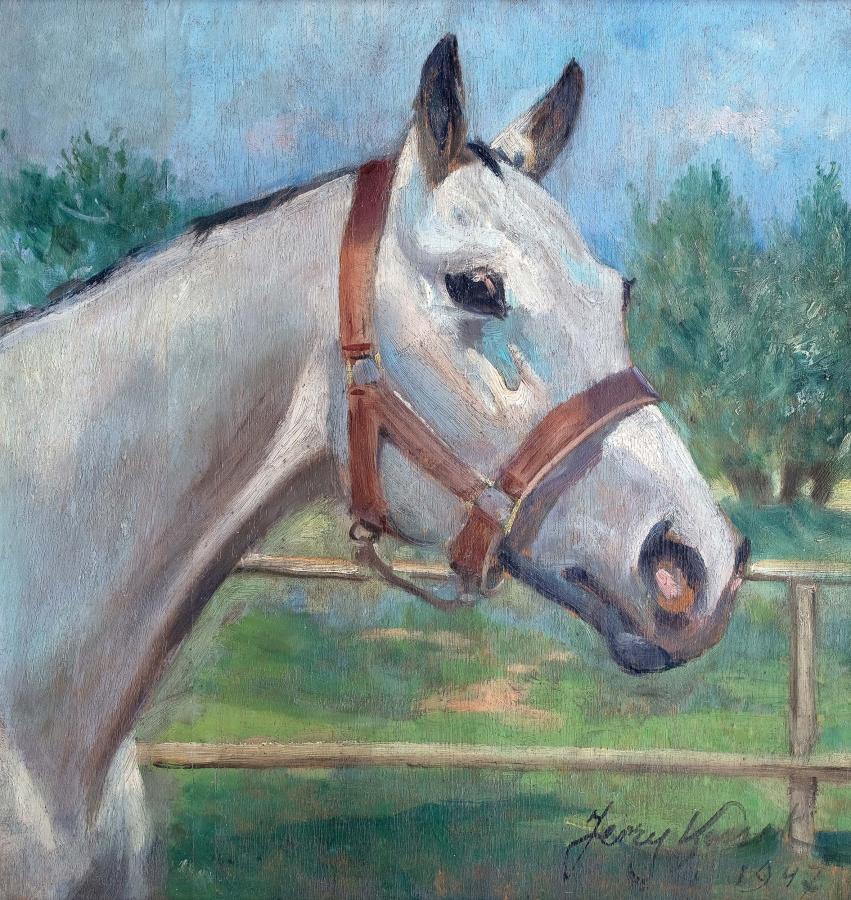 Głowa konia, 1947 r.