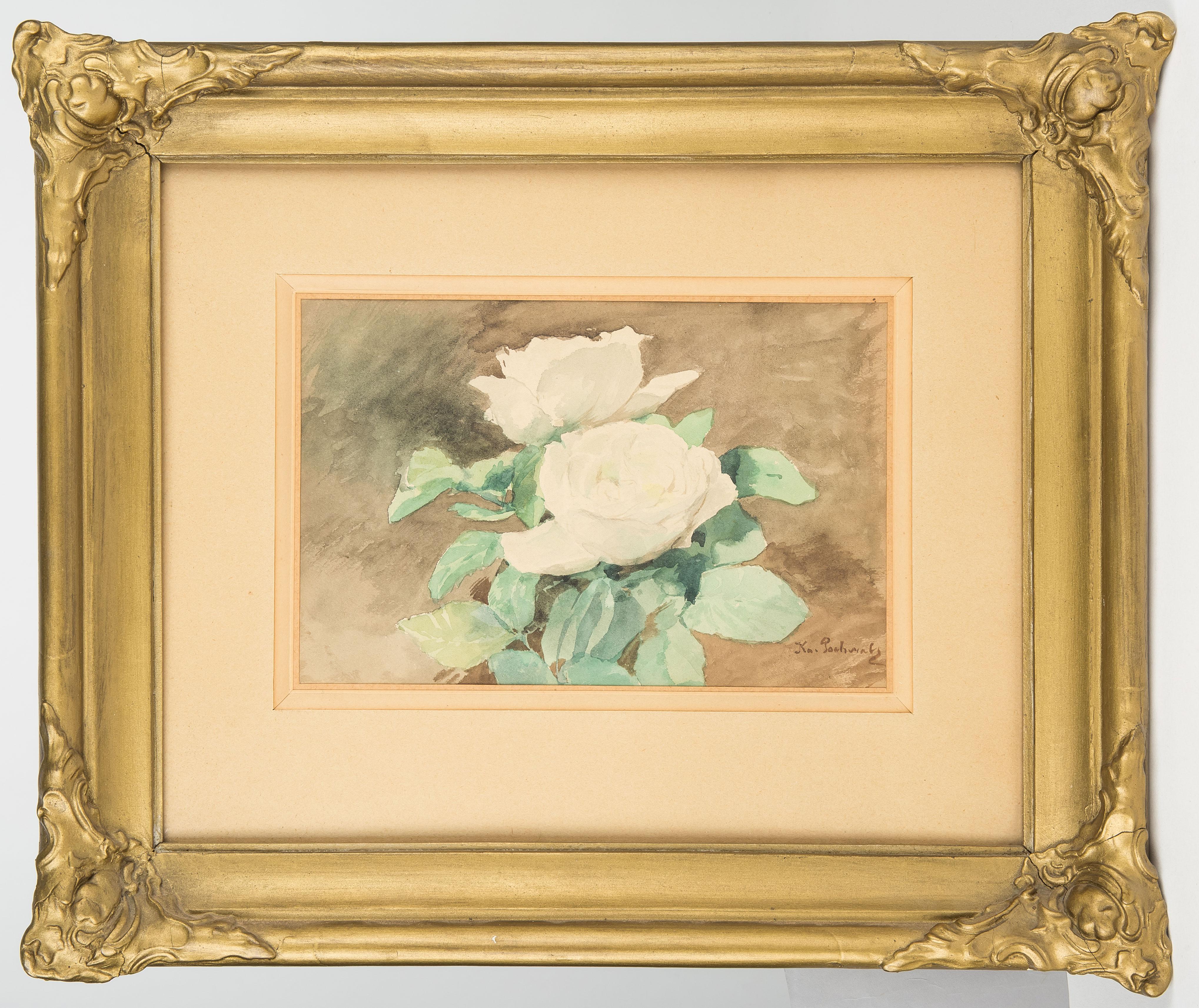 Kazimierz Pochwalski   Białe różyczki