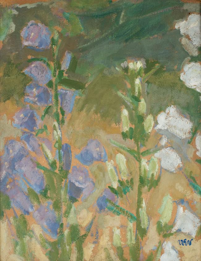 kwiaty-polne-1908-r-wojciech-weiss