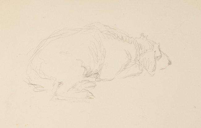 Józef Mehoffer | Odpoczywający pies – szkic do obrazu św. Huberta