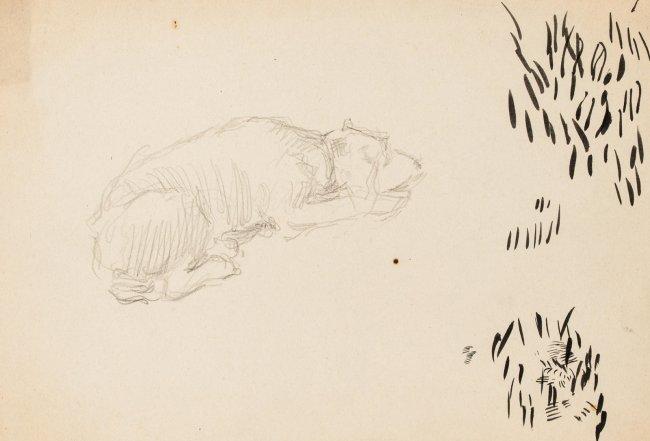 Józef Mehoffer   Szkic śpiącego psa