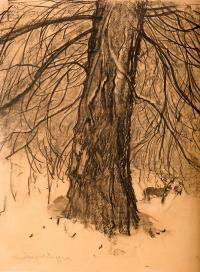 Świerk, 1924 r.