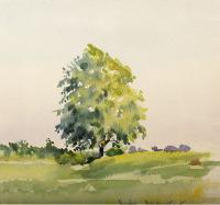 Pejzaż z samotnym drzewem