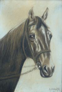 Koń, 1912 r.