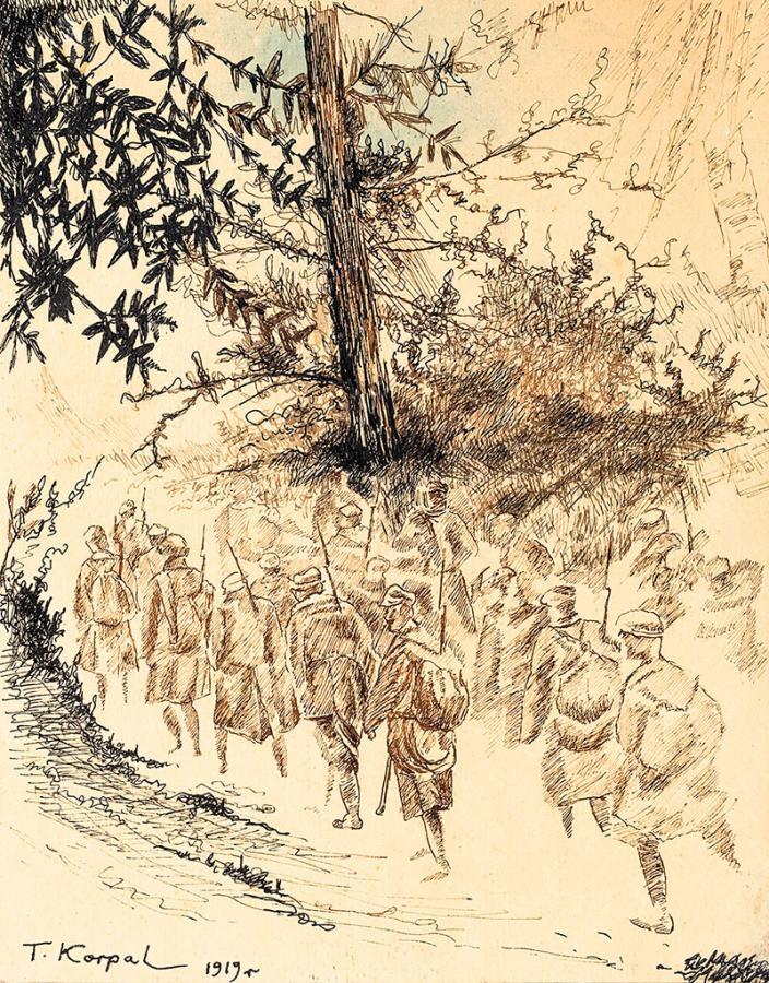 Legiony w Karpatach, 1919 r.