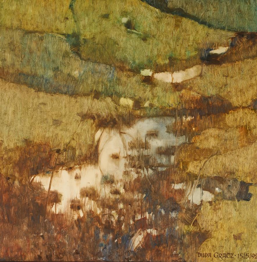 Brzegi łąka, 1992 r. - 1