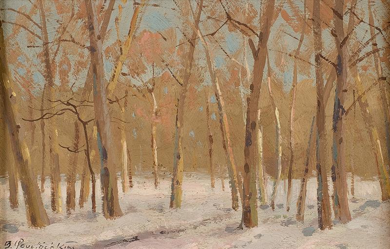 Las zimą - 2