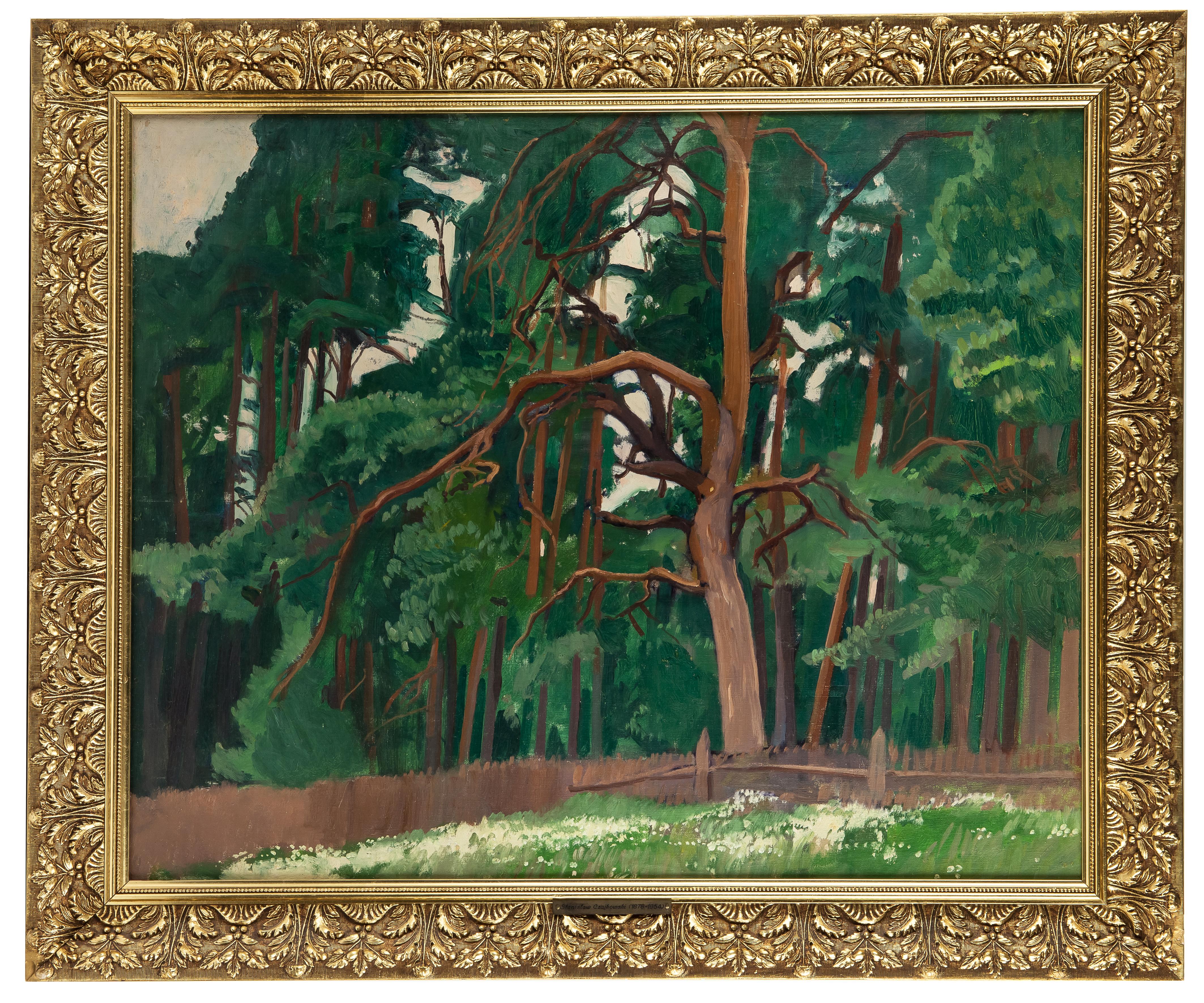 Stanisław Czajkowski | Pejzaż z drzewami